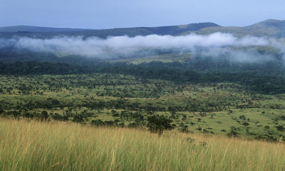 View of Mpassa project area in Gabon