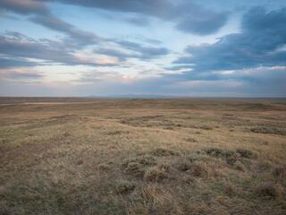 Grasslands NGP