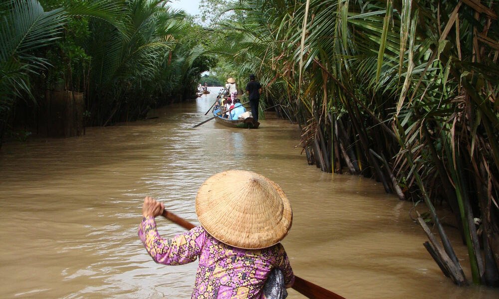 Greater Mekong Dry Forest Ecosystems