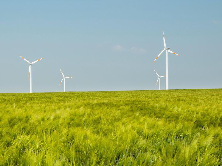 Group of wind turbines, Selfkant, Germany