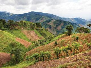 A Landscape in Honduras