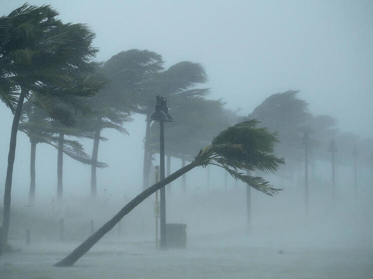 Trees bend in the tropical storm wind along North Fort Lauderdale Beach Boulevard as Hurricane Irma hits the southern part of the state in Fort Lauderdale, Florida.