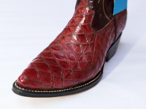 Illegal boots made from pangolin scales