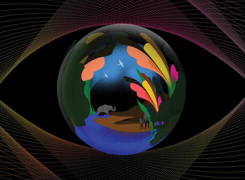 Colorful illustration of eye with animal figures