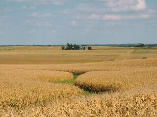 Iowa agricultural land.