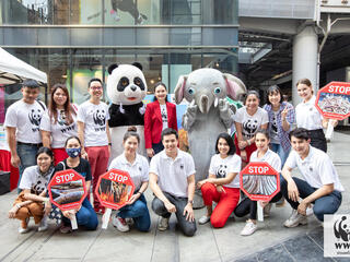 Supporters voice need to end ivory trade