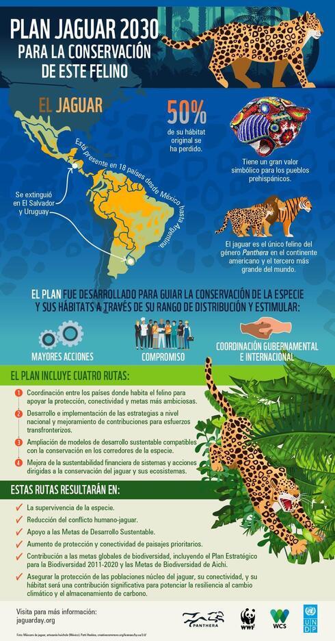Jaguar Conservation Plan