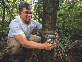 Man puts camera on tree