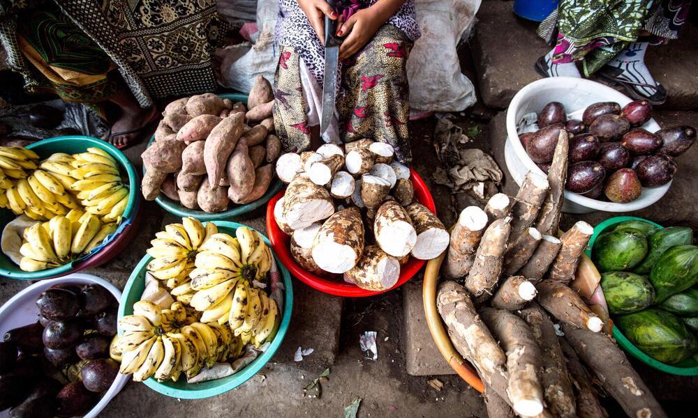 Fruit and vegetable vendor in Primeiras e Segundas, norhtern Mozambique market