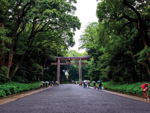 Japanese park gate
