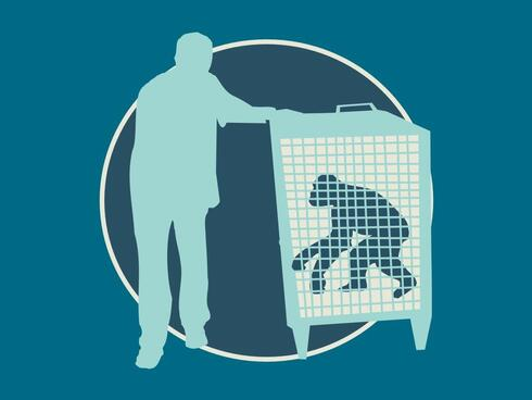 Graphic of person with monkey in cage