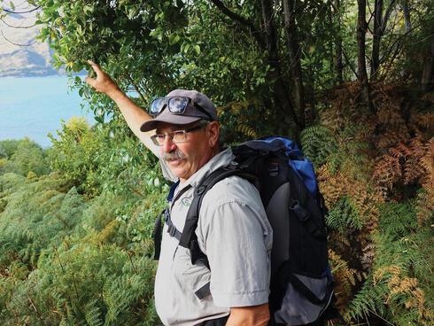 Lake Wanaka guide