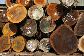 Legally harvested timber