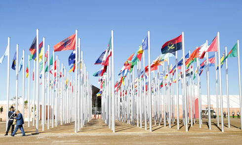flags outside at COP22