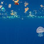Jellyfish (Catostylus sp.) swims beneath a slick of plastic debris. Indian Ocean off Sri Lanka.