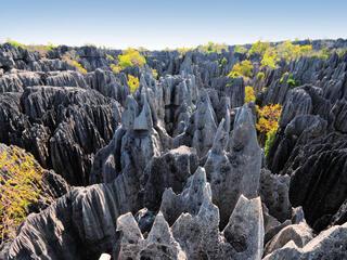Pointy grey rock formation