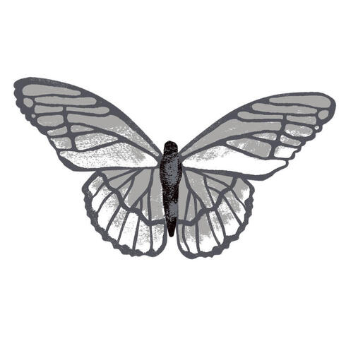 Made With Code Monarch Butterfly Drawing