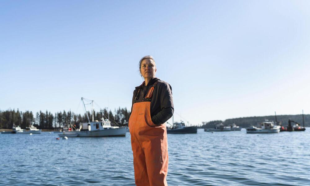 Seaweed farmer Karen Cooper stands on pier in Owls Head Harbor, Maine