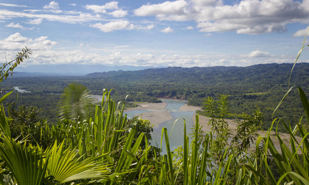 Vista del Rio Alto Madre de Dios