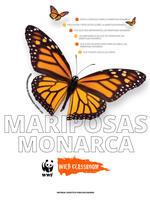 Herramientas Completas sobre las Mariposas Monarca Brochure
