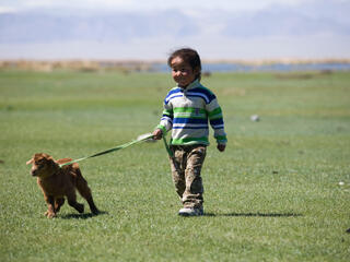 A young child walking a goat on a leash across a grassy landscape