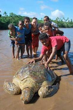 Josua Muakula and a marine turtle
