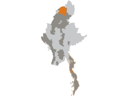 Map of species in Myanmar