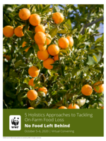 5 Holistic Approaches to Tackling On-Farm Food Loss: 2020 No Food Left Behind Virtual Convening Summary Brochure