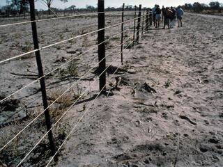 Namibia Elephant Fence