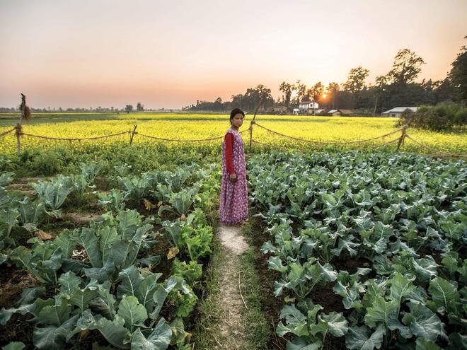 Nepalese woman standing in her vegetable field.
