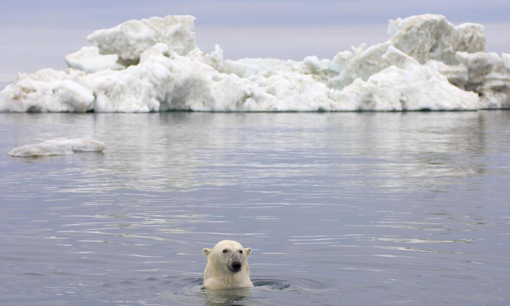 Beaufort Sea, Arctic Ocean, Alaska