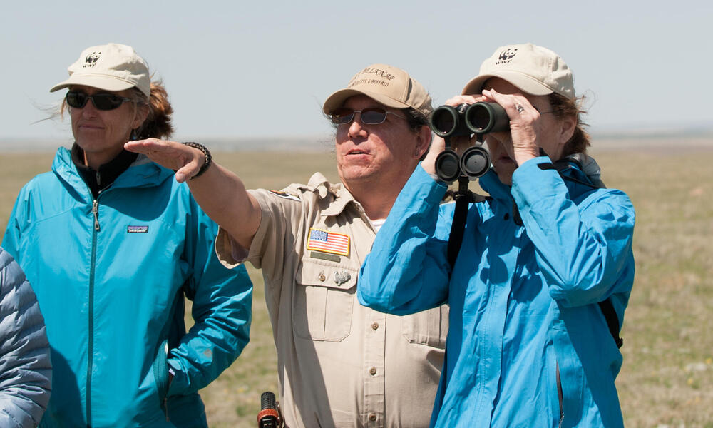 Observing the Snake Butte bison pasture at Ft. Belknap Reservation, Montana