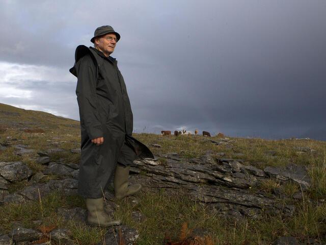Pat Nagle looking across a field in Ireland.