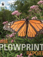 Plowprint General Report Brochure