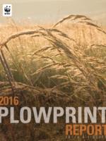 Plowprint Technical Report Brochure