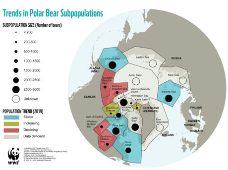 Polar Bear Population Update Map 2019