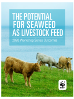 The Potential for Seaweed as Livestock Feed, Workshop Report 2020 Brochure