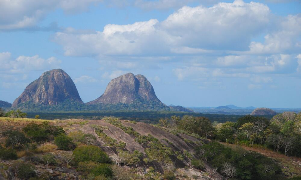 Preserving Freedom to Roam, Coastal East Africa