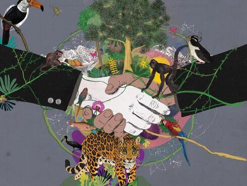 Project Finance illustration