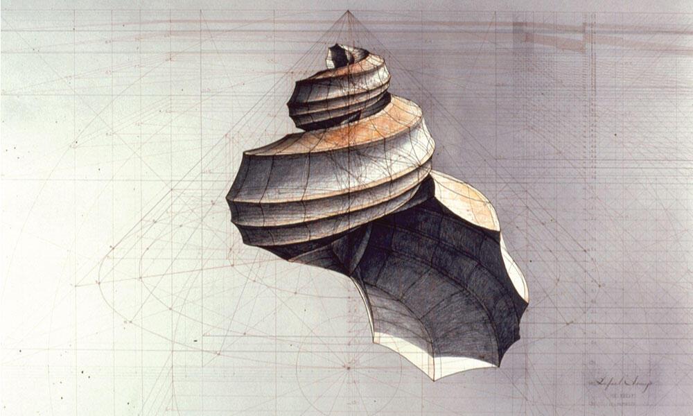 Drawing by Rafael Araujo