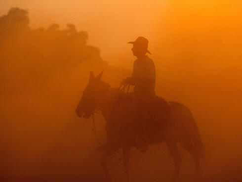 A rancher on a horse in the Pantanal