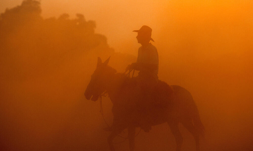 Rancher on a horse in the Pantanal