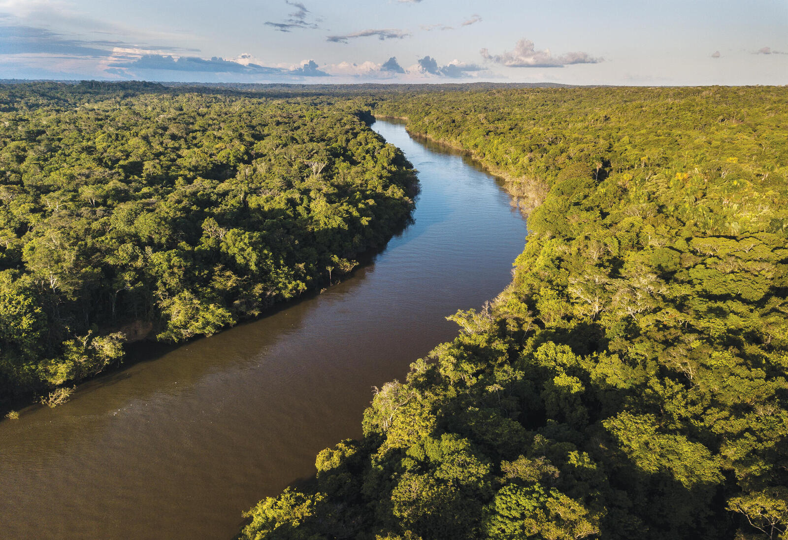 Landscape of river from above