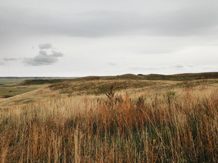 Rockhills Ranch landscape of hills