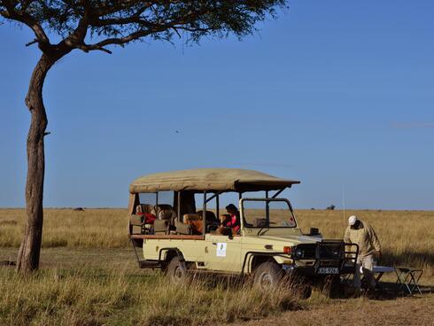 A safari truck sits under a tree in the savanna