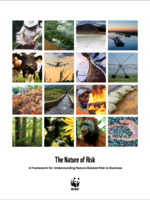The Nature of Risk: A Framework for Understanding Nature-related Risk to Business Brochure