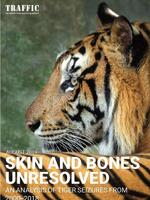Skin and Bones Unresolved: An analysis of tiger seizures from 2000-2018 Brochure