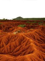 Soil Erosion and Degradation