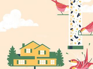Illustration of birds on feeders