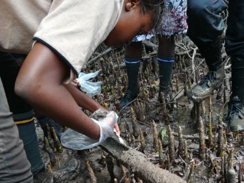 A researcher tests a soil core